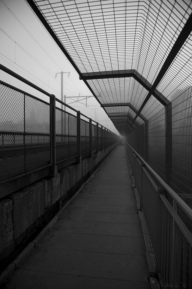 Brouillard à la passerelle de Serrières