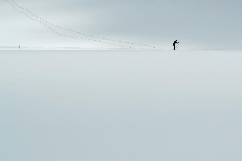 Le skieur de fond (1)