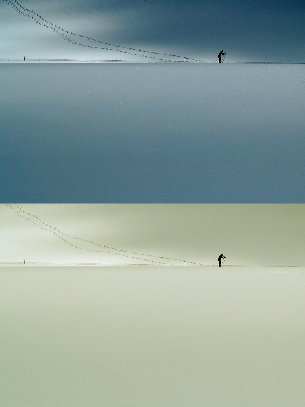Le skieur de fond (2 et 3)