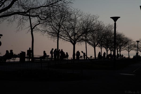 La vie à Neuchâtel (9)