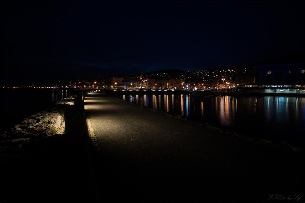 Neuchâtel de nuit (1)