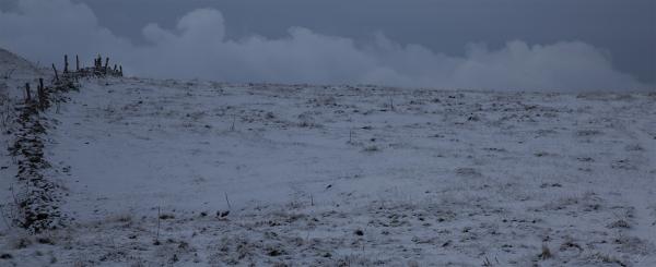 La neige manque (2)