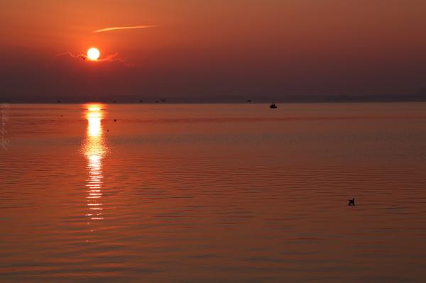 Les pêcheurs du matin