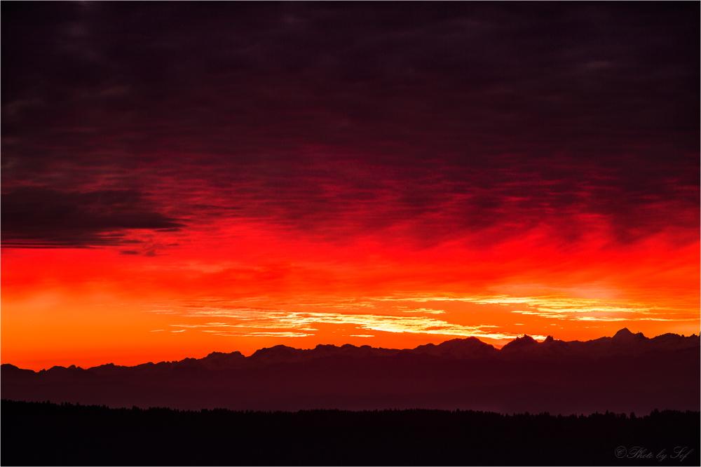 Lever du soleil à la Vue des Alpes (2)