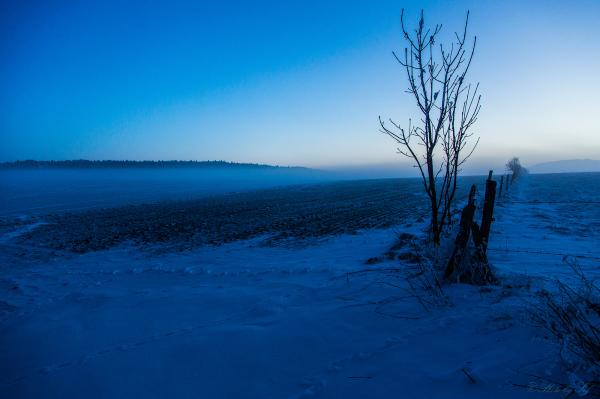 Le brouillard s'installe...
