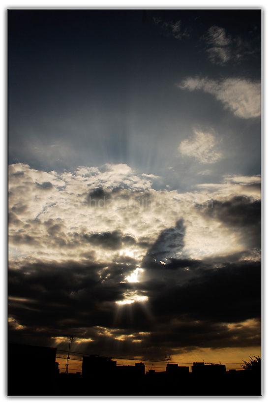 arash dz photography