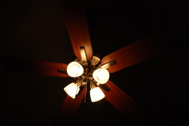 Fan and Light