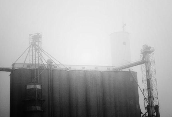 fog over bg