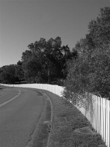 long white picket