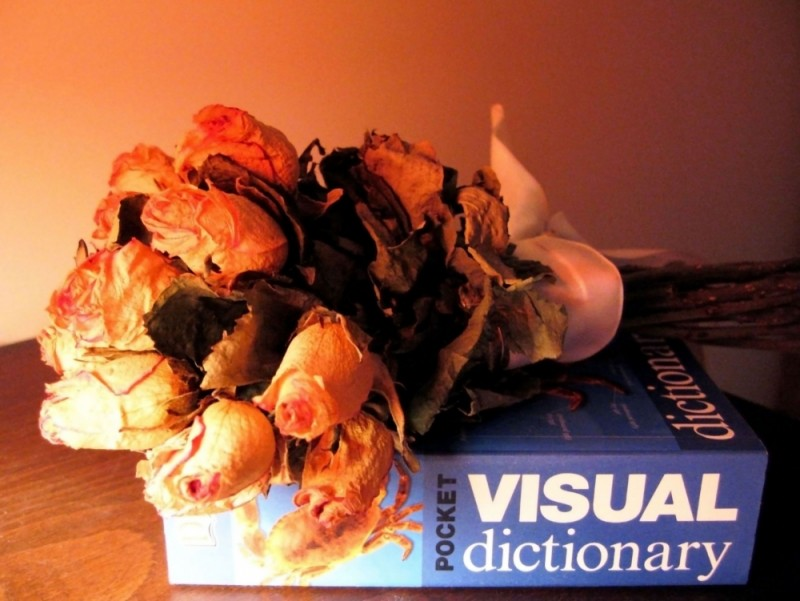 love visual dictionary night