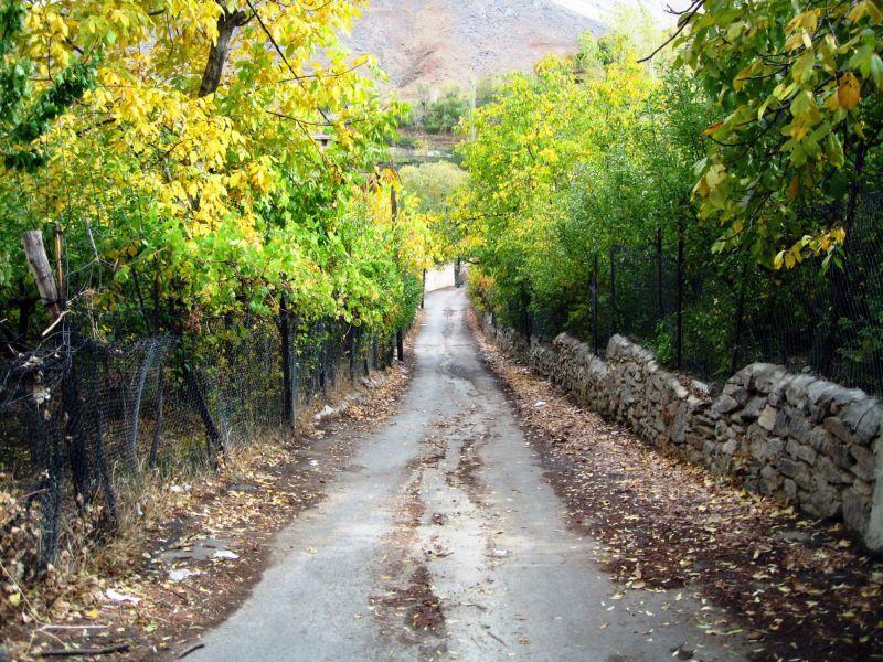 fall road ganjnameh hamadan