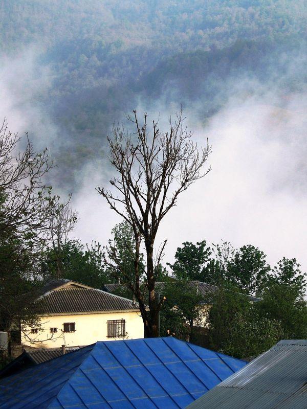 mist mazandaran village