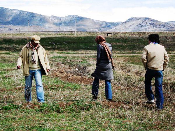 wandered friends farm