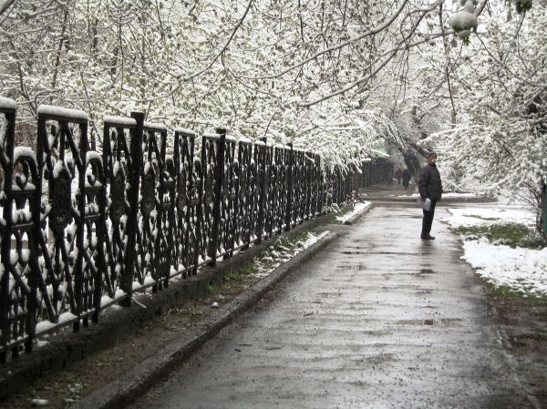snow memory cityscape