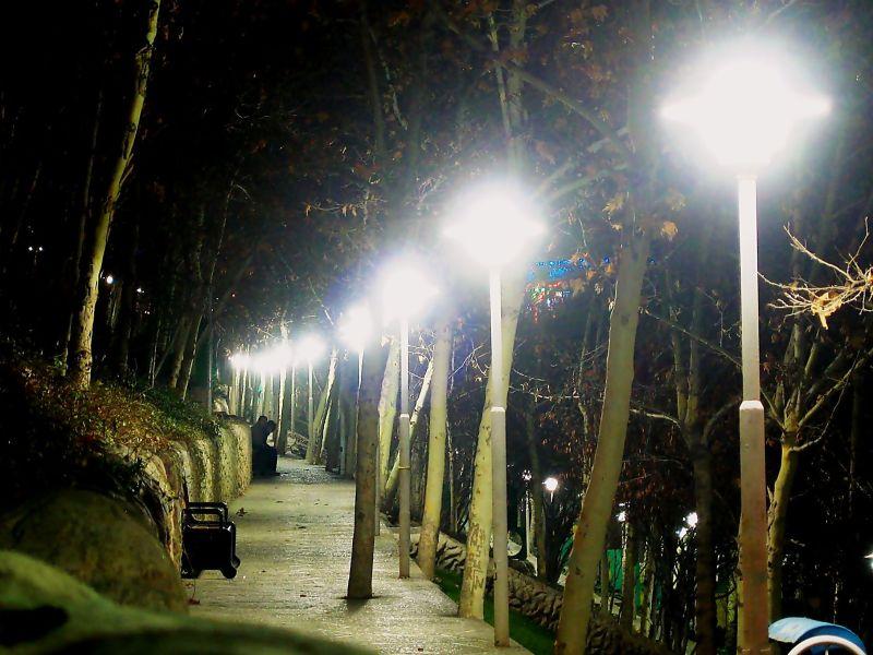 walk cold night park sa'ee