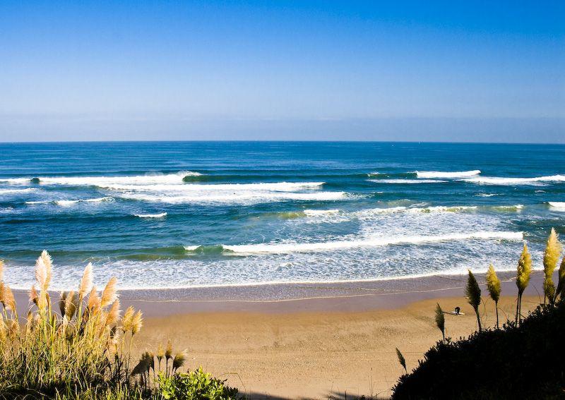 nomdas.eu, surf anglet, jordi vila