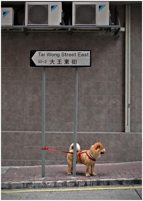 tai wong street east