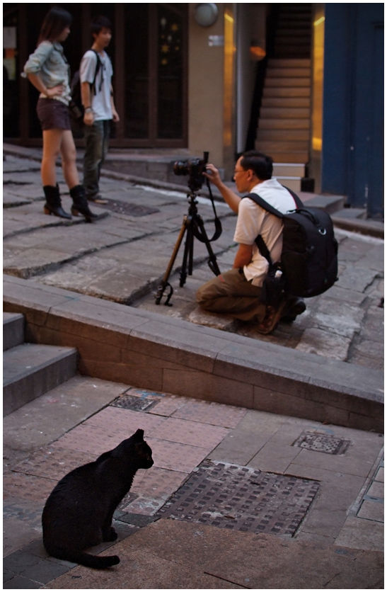 the onlooker...