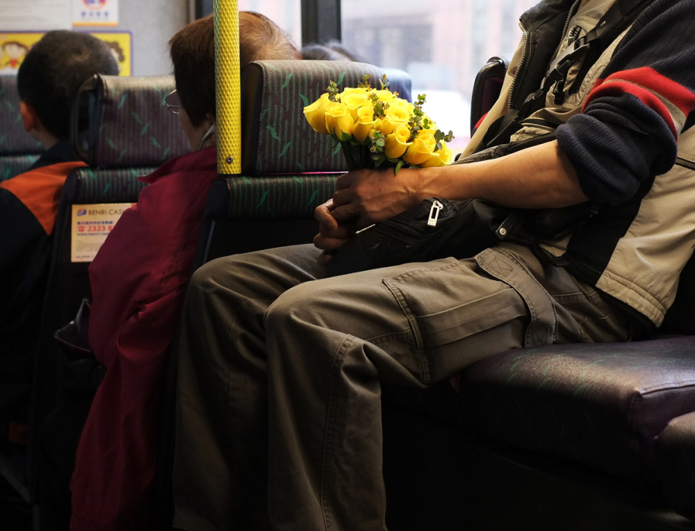 """yellow flowers"" ... on the bus (iv)"