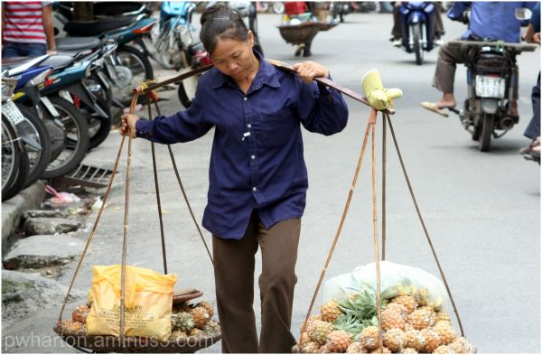 Street scene - Hanoi - transport to market