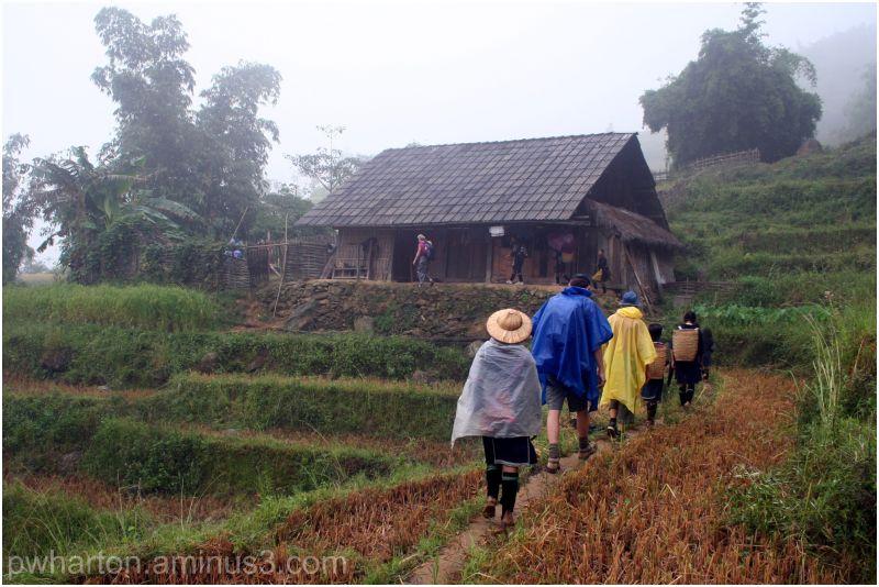 Trekking near Sapa - Vietnam