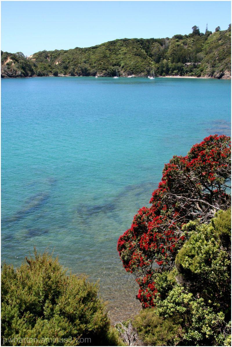 View from Moturura Island