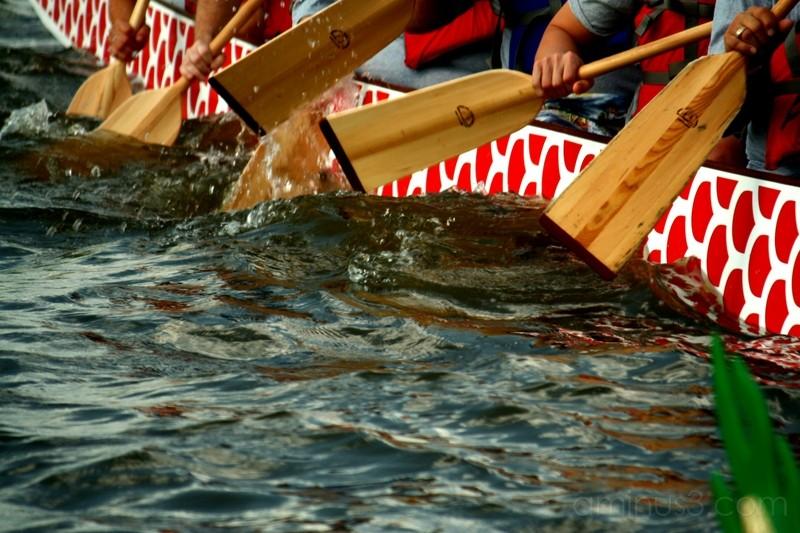 Row Row Row a Dragon boat
