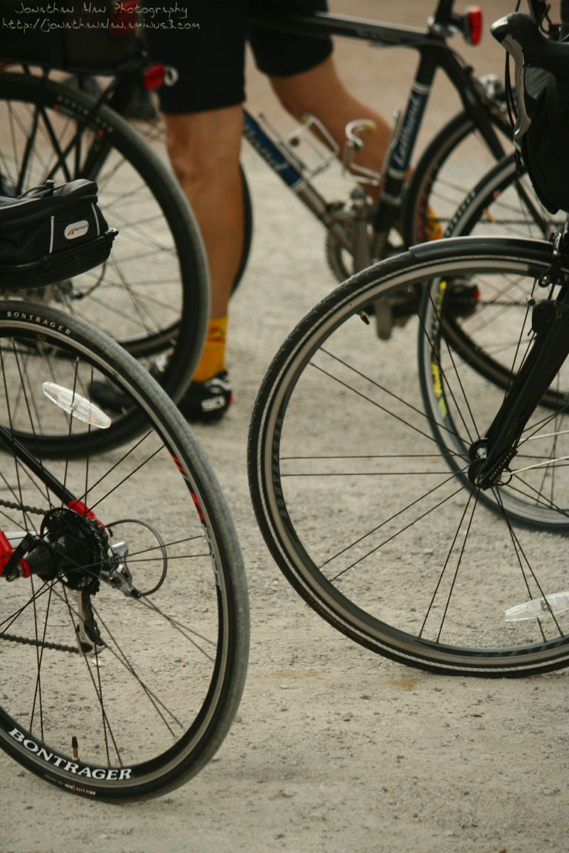 Wheels Worth Racing