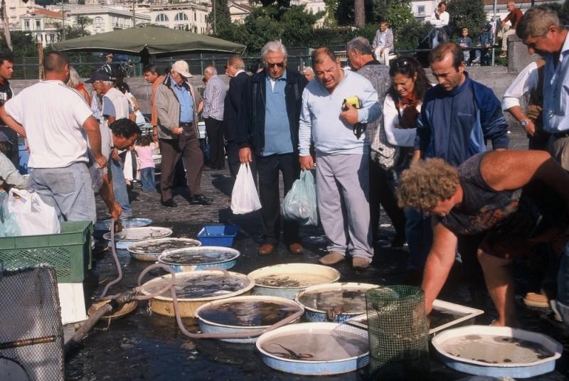 Napoli bay's fish market