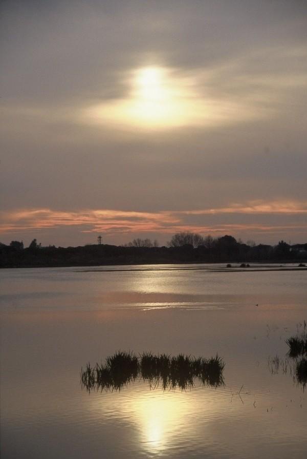"El Rocio ""the mum of the marshes"""