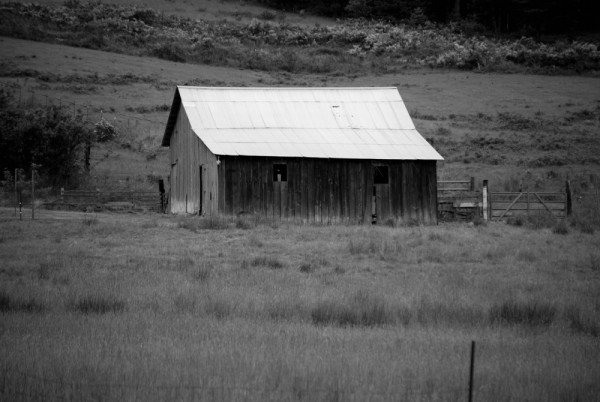 Barn in Black and White