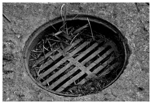 drain 2.0
