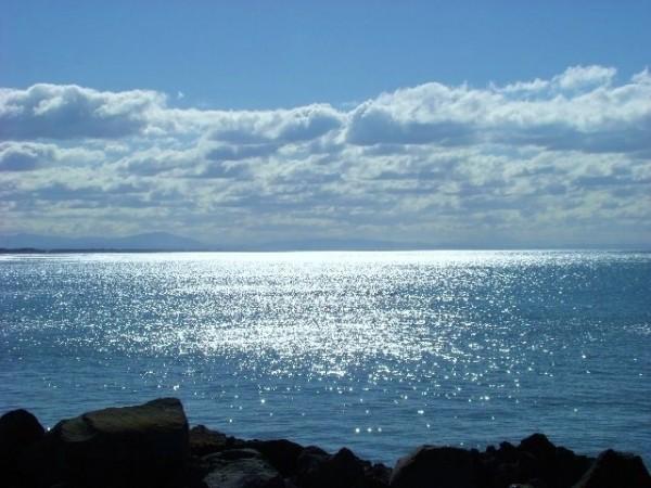 Pacific Calm