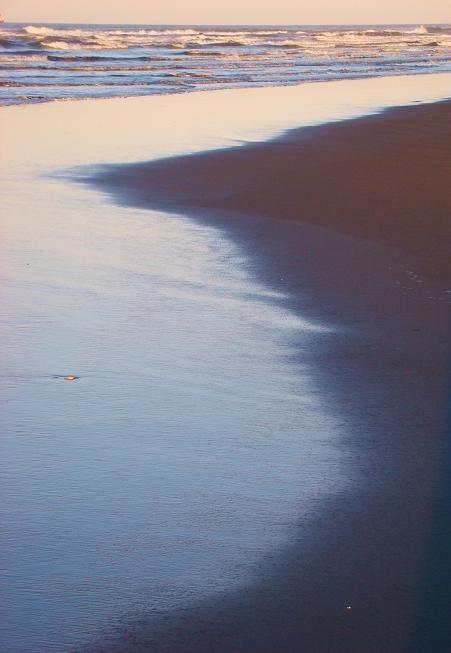 Truely Virgin Sands