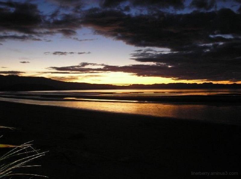 Golden Bay at night!