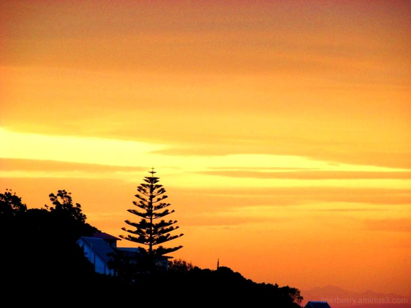 Sumner Sunset #1