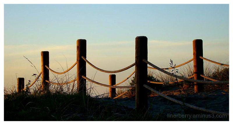 Sunset over sand dune.