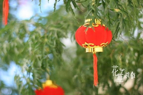 red lanten