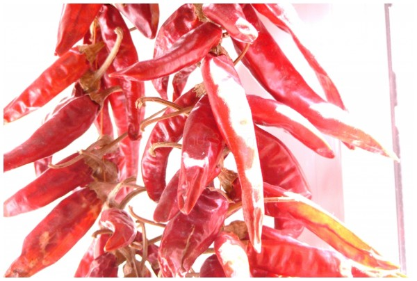 piments rouges - red chili