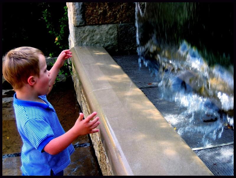 Water fountain amazement