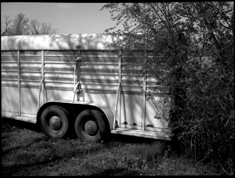 horse trailer - grant edwards photography