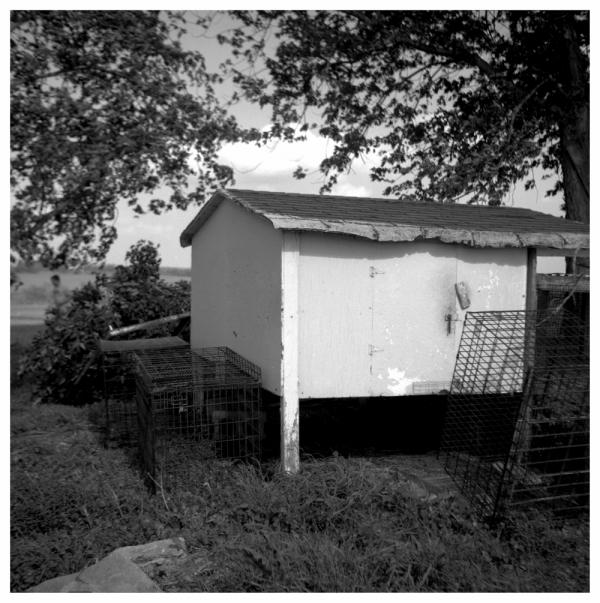 chicken coop, highland kansas - grant edwards
