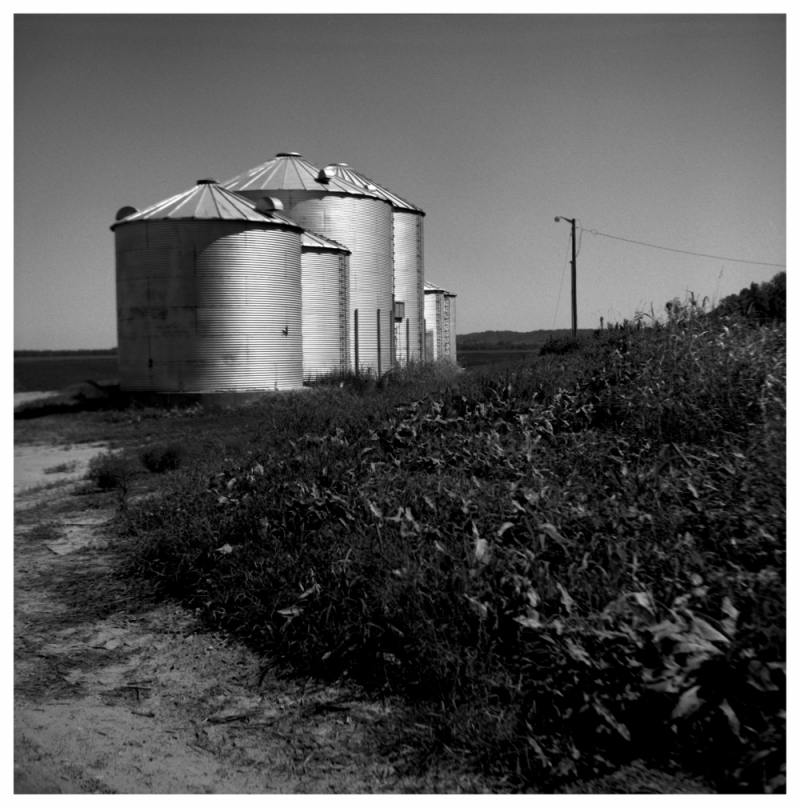 silos, rural kansas - rolleiflex, b&w photo