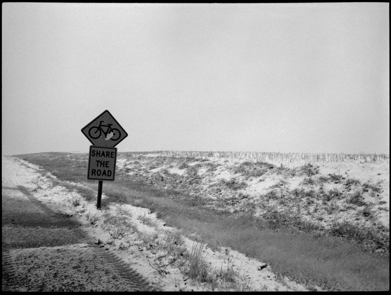 'share the road' sign in the snow - b&w photo
