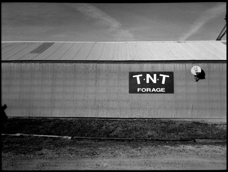 tnt forage - archie, mo - b&w photo