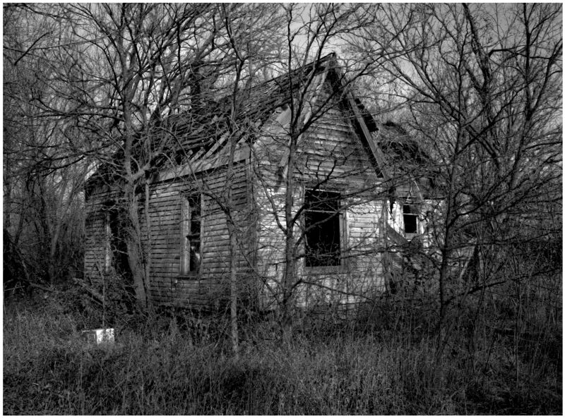 abandoned house in the woods - b&w photo