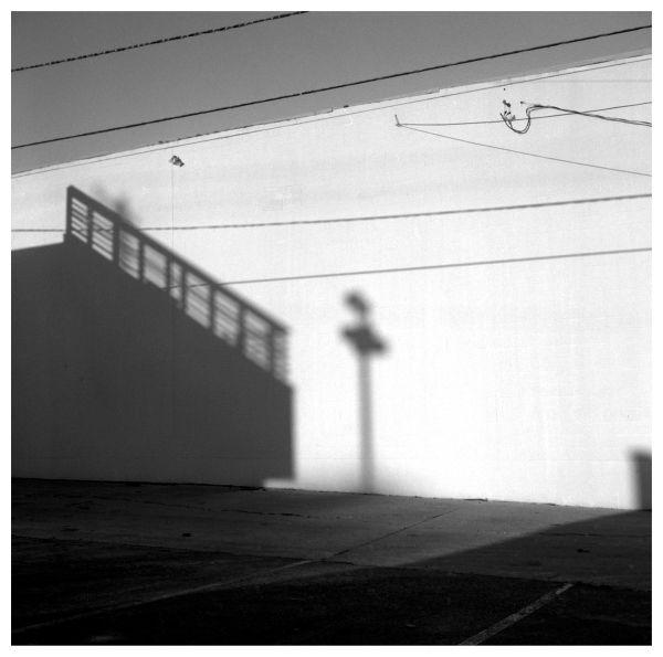 shadows on a white wall - b&w photo
