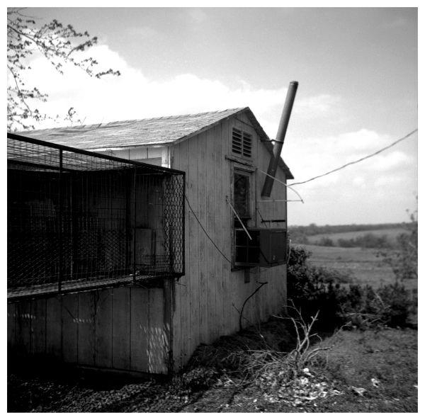 chicken coop - kansas farm - rural kansas