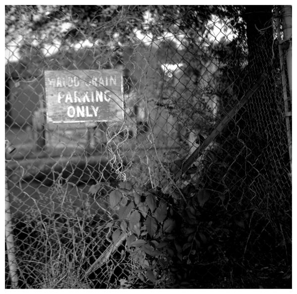 waldo grain - no parking sign - b&w photo