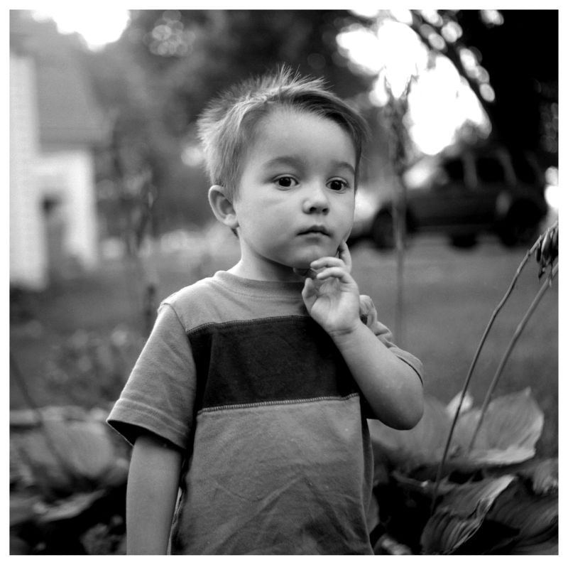 young boy in a garden - black and white photo